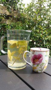 ijsthee 2 zonder honing e1505741986561 169x300 Icetea homemade, dat kun jij ook maken!